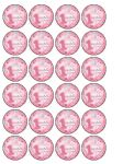 24 x Girl 1st Birthday wafer rice paper bun cup cake toppers